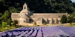 lieux incontournables dans le Luberon - L'abbaye Notre Dame de Sénanque